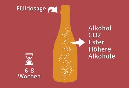 Flaschengärung (Schaumbildung)